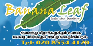 Banana leaf